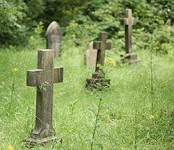 Рассорка на кладбищенскую землю и фото