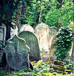 Порча на кладбище